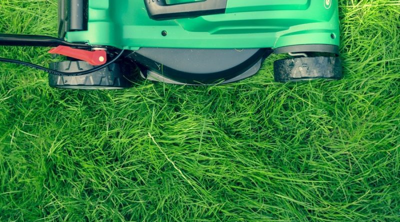 How to Buy the Best Lawn Mower for Your Gardening Needs