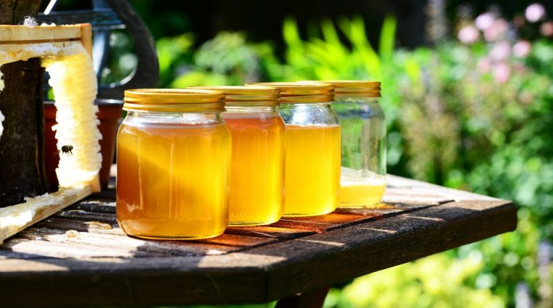 Helping Your Local Honey Bees