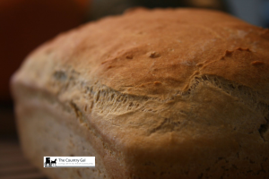 Amish Wheat Bread