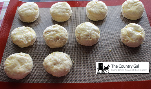 biscuits on cooking tray2